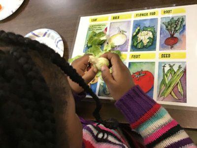 kids learning 9